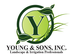 young and sons landscaping logo